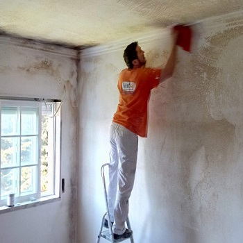 mold cleaning and painting